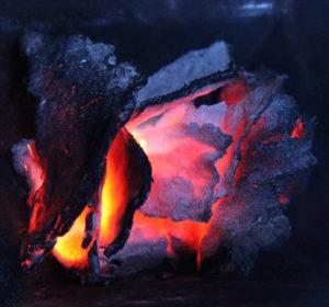 Vedische Feuertechniken zur Umweltharmonisierung @ Artgerecht Leben